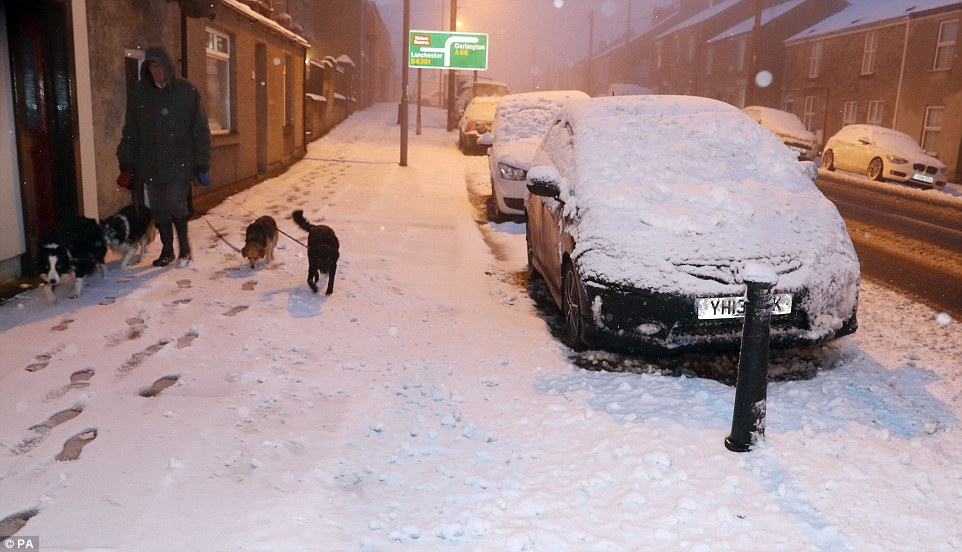 Warning to Pet Owners Over Gritting Danger